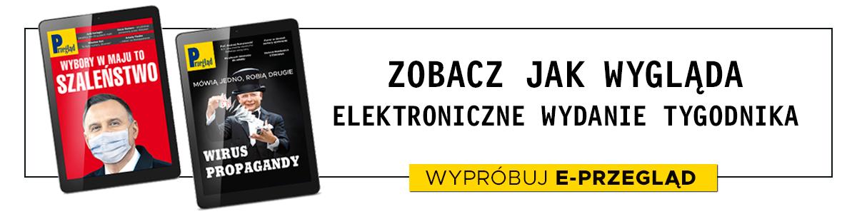 Banner zajawki e-PRZEGLĄDU nr17/2020